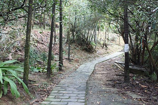 1124龜山福源山步道 (8)