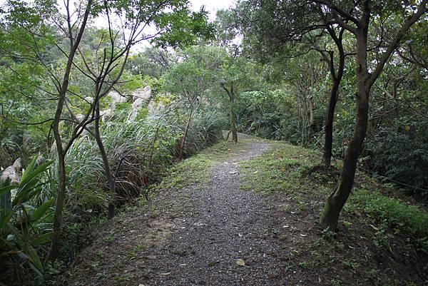 1124龜山福源山步道 (20)