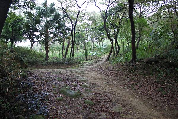 1124龜山福源山步道 (21)
