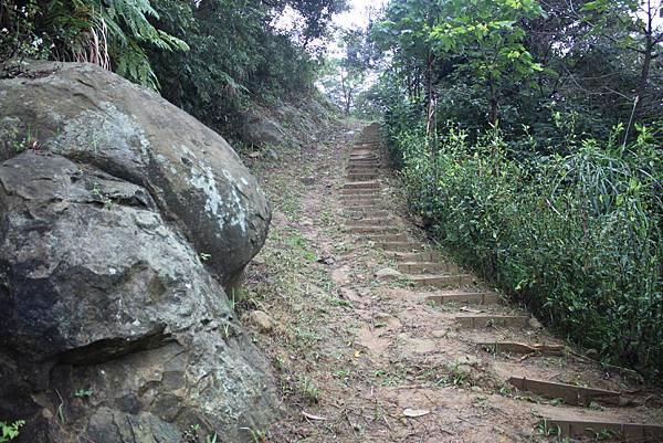 1124龜山福源山步道 (24)