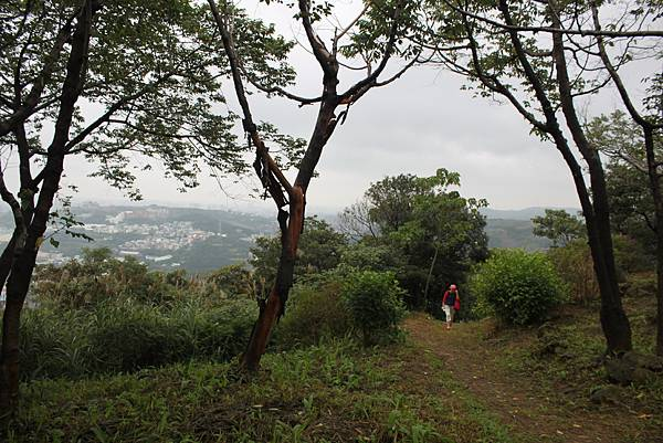 1124龜山福源山步道 (26)