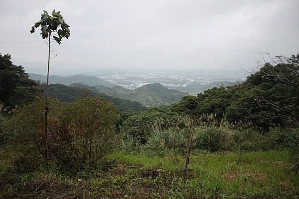 1124龜山福源山步道 (28)
