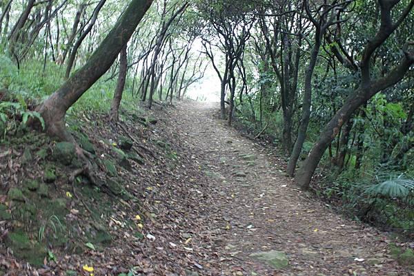 1124龜山福源山步道 (30)