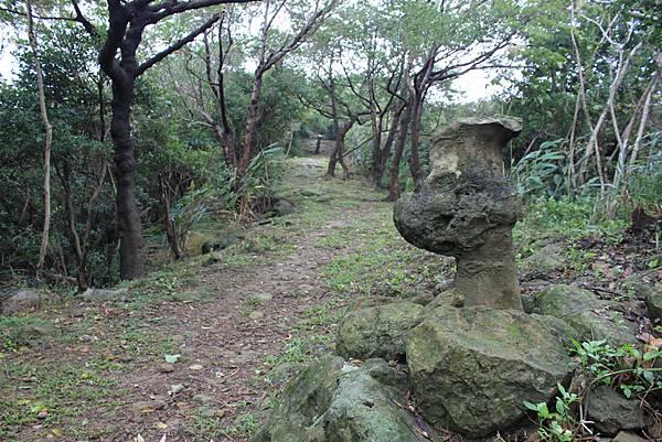 1124龜山福源山步道 (31)