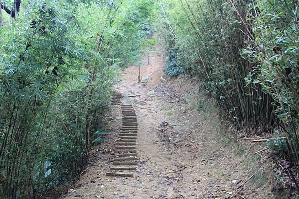 1124龜山福源山步道 (39)
