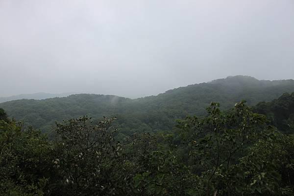 1124龜山福源山步道 (62)