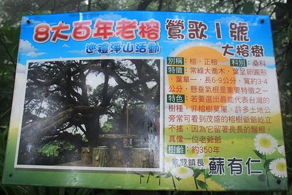 1124龜山福源山步道 (60)