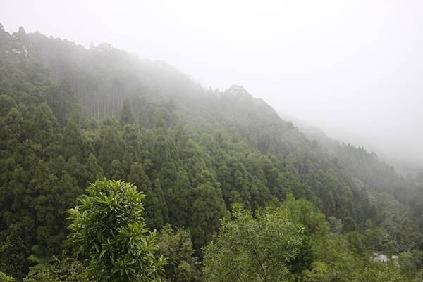 1208馬武督山迷航記 (11)
