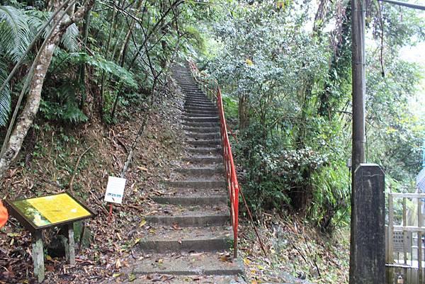 1223雨天的烏來紅河谷步道 (1)