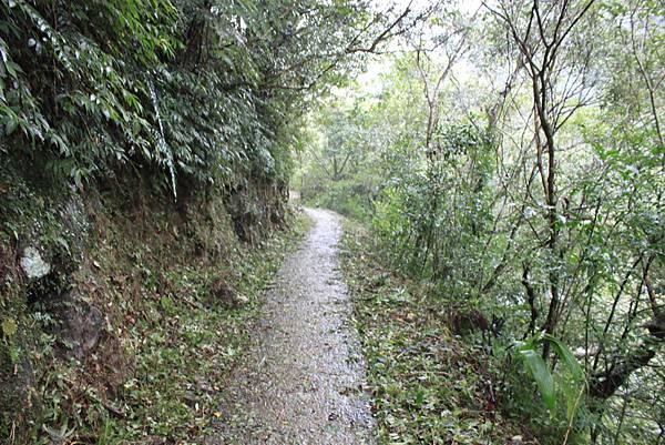 1223雨天的烏來紅河谷步道 (2)