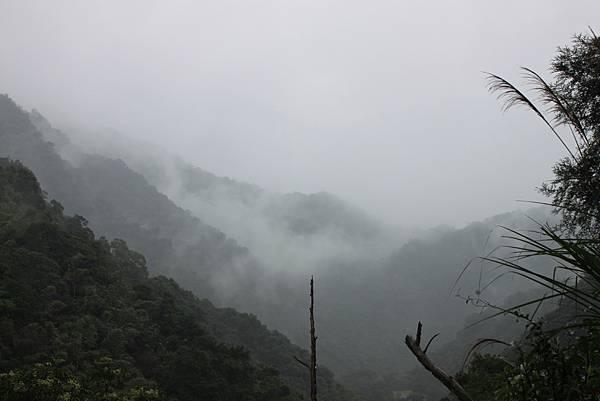 1223雨天的烏來紅河谷步道 (8)