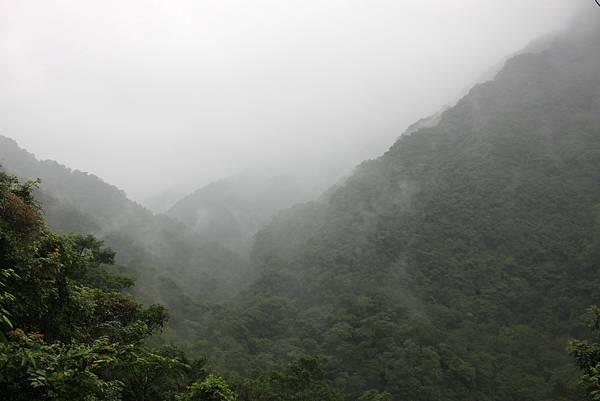 1223雨天的烏來紅河谷步道 (11)