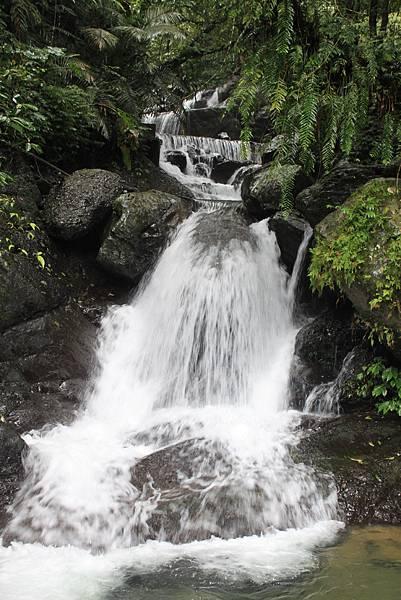 1223雨天的烏來紅河谷步道 (16)