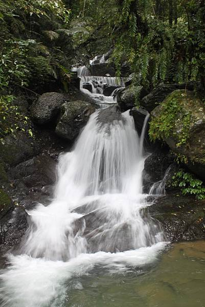 1223雨天的烏來紅河谷步道 (17)