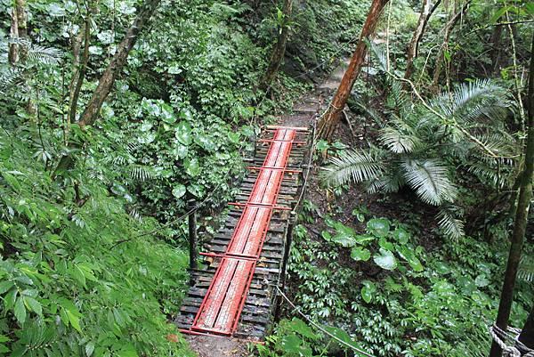 1223雨天的烏來紅河谷步道 (19)