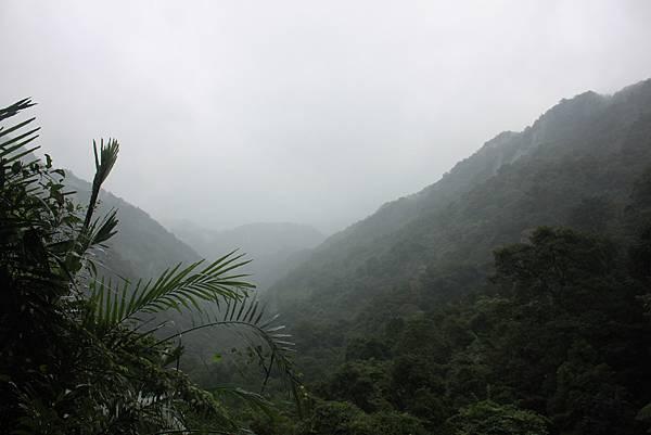 1223雨天的烏來紅河谷步道 (20)