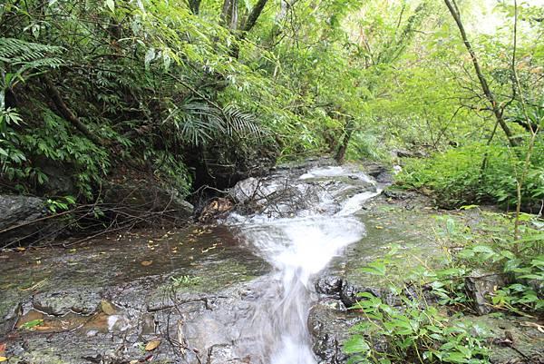 1223雨天的烏來紅河谷步道 (24)