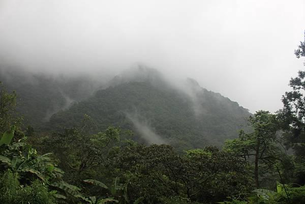 1223雨天的烏來紅河谷步道 (26)
