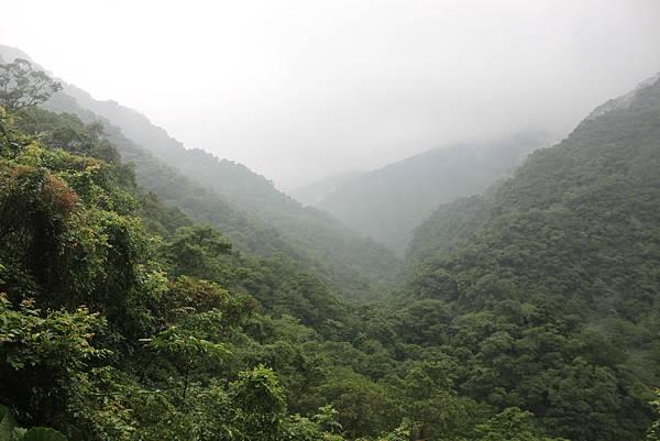 1223雨天的烏來紅河谷步道 (32)