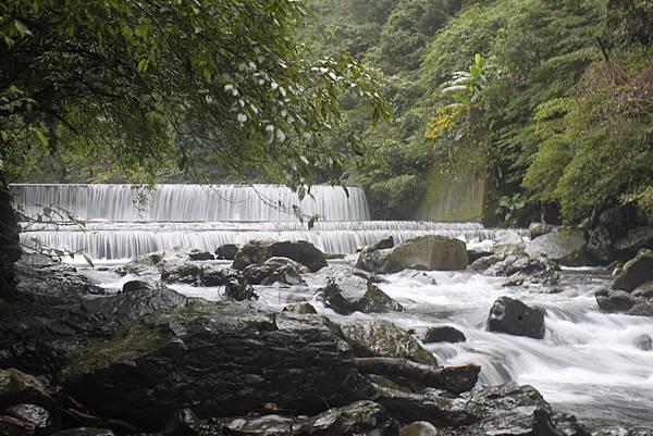 1223雨天的烏來紅河谷步道 (37)