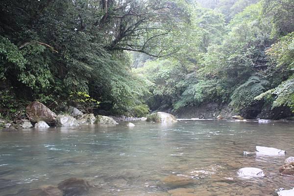 1223雨天的烏來紅河谷步道 (39)