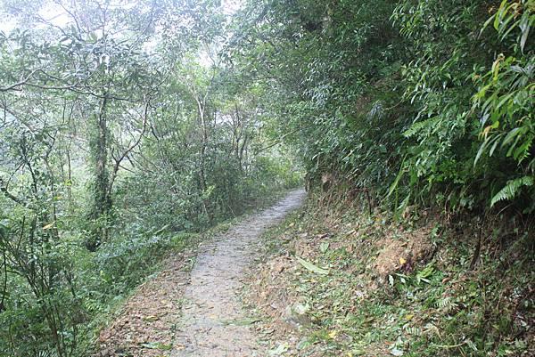 1223雨天的烏來紅河谷步道 (40)