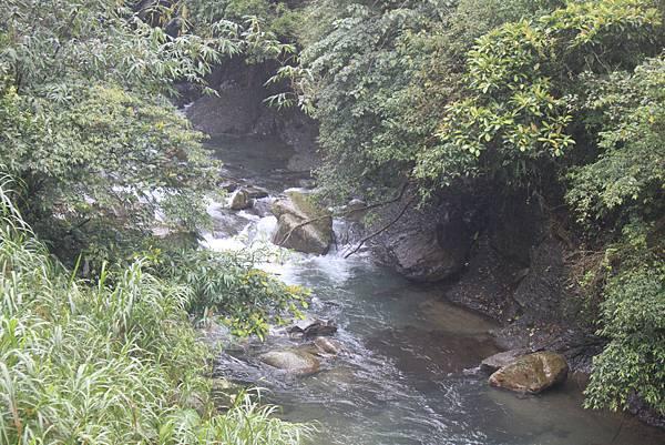 1223雨天的烏來紅河谷步道 (41)