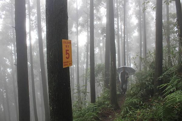 1231向天湖高光天山 (26)