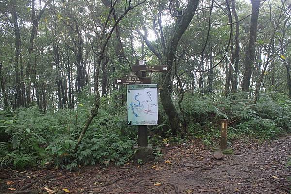 0106新店烏來大桶山 (40)