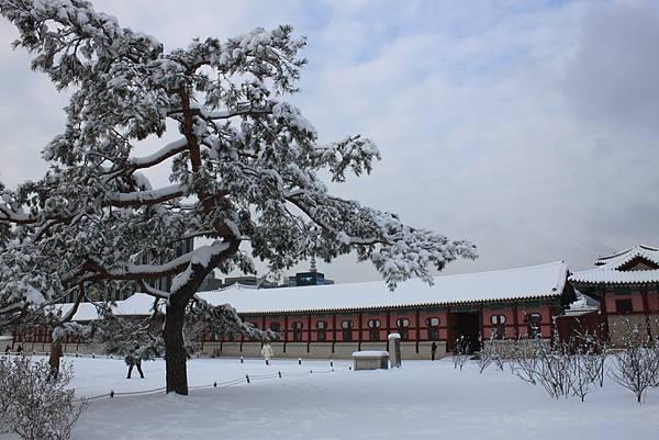 0204韓國景福宮 (3)
