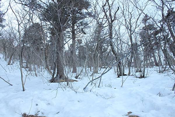 0202韓國雪嶽山國家公園 (57)