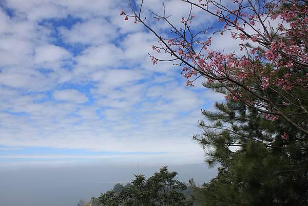 0214台中頭嵙山 (31)