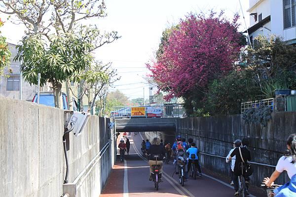 0215東豐自行車道 (32)