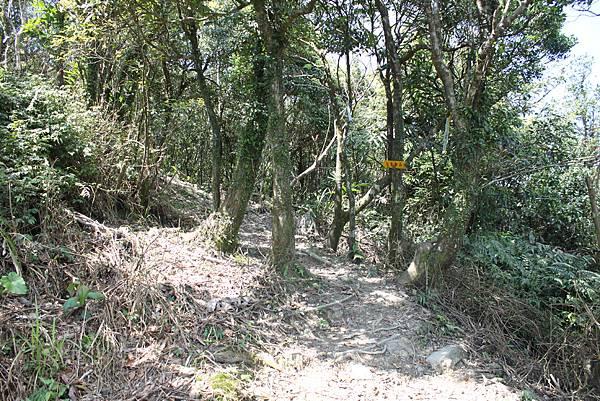 0309宜蘭大溪太和山 (28)