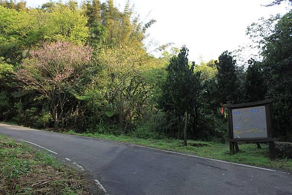 平溪內平林山及平湖森林遊樂區騎單車 (2)