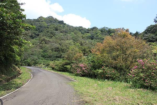 平溪內平林山及平湖森林遊樂區騎單車 (48)