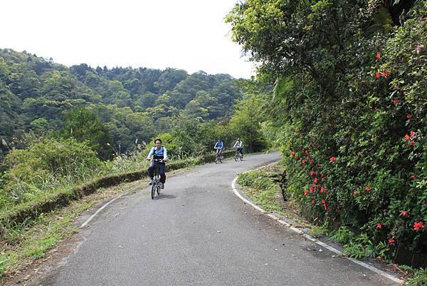 平溪內平林山及平湖森林遊樂區騎單車 (49)