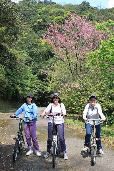 平溪內平林山及平湖森林遊樂區騎單車 (53)
