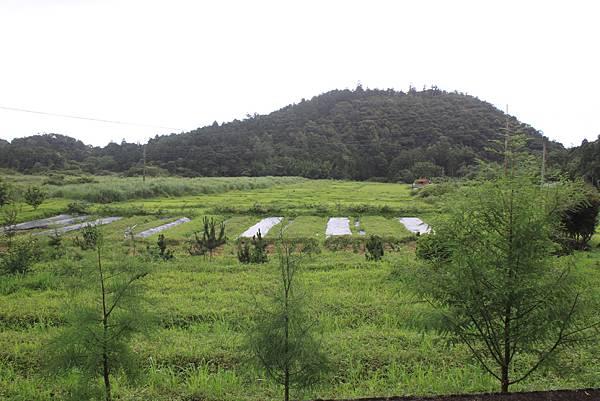 0525宜蘭礁溪鵲子山 (4)