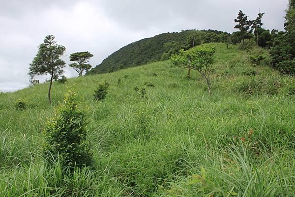 0525宜蘭礁溪鵲子山 (19)