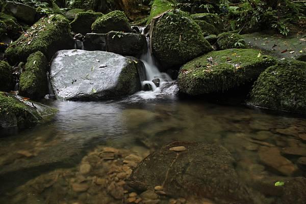 0616坪林胡桶古道東坑山 (36)