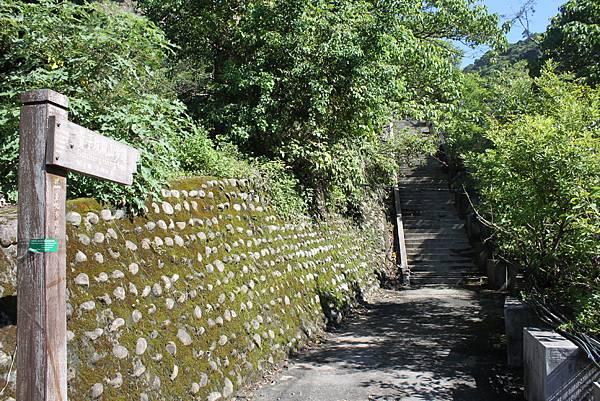 貴子坑親山步道 (3).JPG