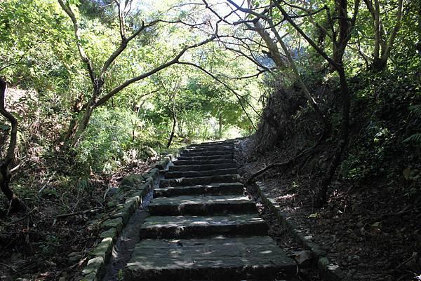 貴子坑親山步道 (9).JPG