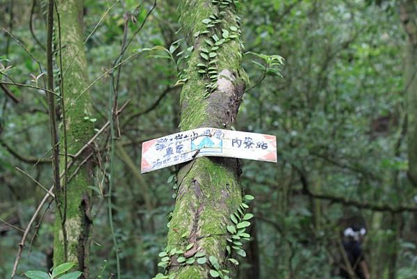 0907內寮古道接瑪礁古道 (25).JPG