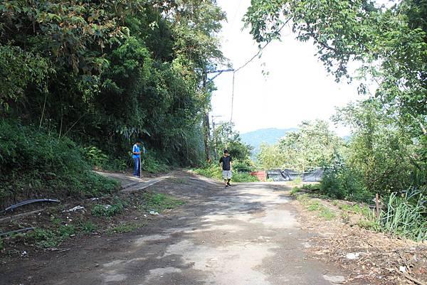 0919復興鄉枕頭山 (1).JPG