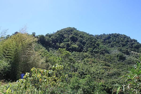 0919復興鄉枕頭山 (56).JPG