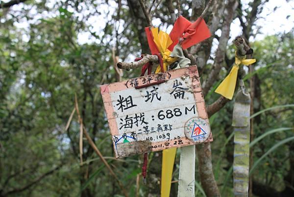 1010粗坑崙山 (30).JPG