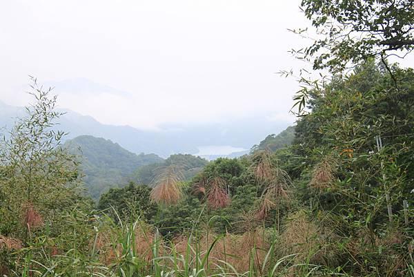 1021103新店向天湖山 (1).JPG
