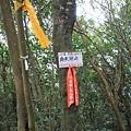 1021103新店向天湖山 (18).JPG
