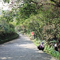 1117草嶺古道 (84).JPG
